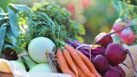 Dostawa warzyw i owoców do domu– dobry pomysł na biznes w czasie pandemii