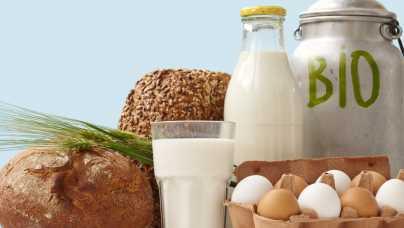 Ekologiczna żywność - dobry pomysł na zdrowy biznes