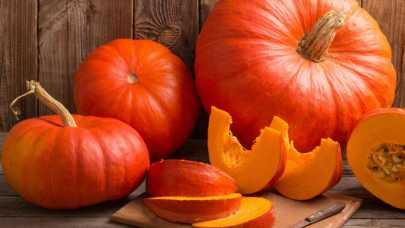 Uprawa dyni - dobry pomysł na jesienny biznes