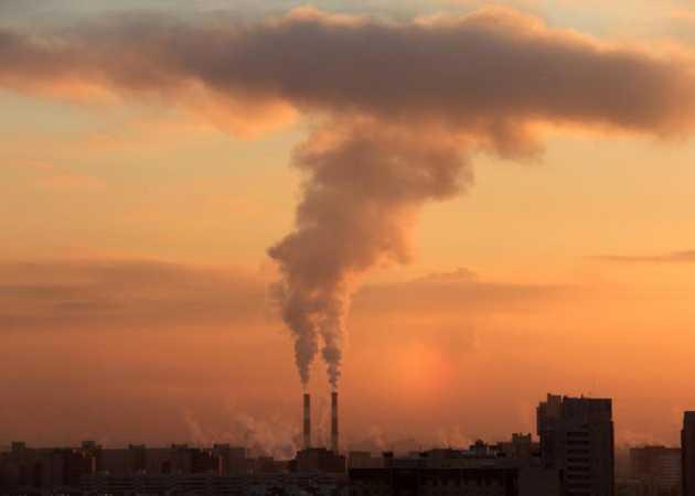 Maski, oczyszczacze, czujniki i mech, czyli jak zarobić na smogu