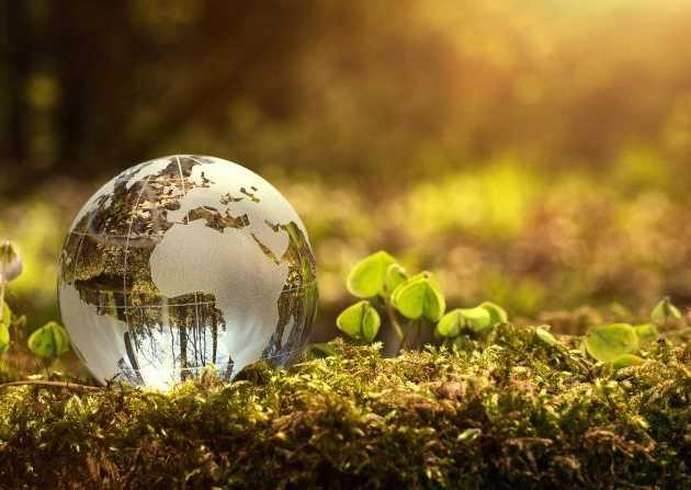 Sport, eko, rolnictwo - franczyza idealna dla ciebie