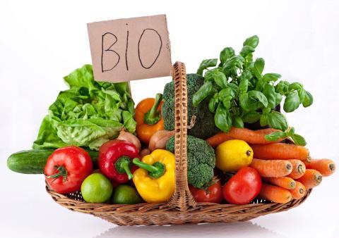 Pomysł na internetowy sklep z eko żywnością